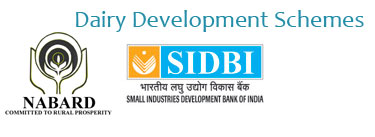 Dairy Development Schemes